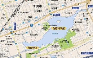 Toyanogata