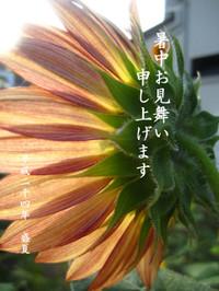 2011_0825_063451img_16072